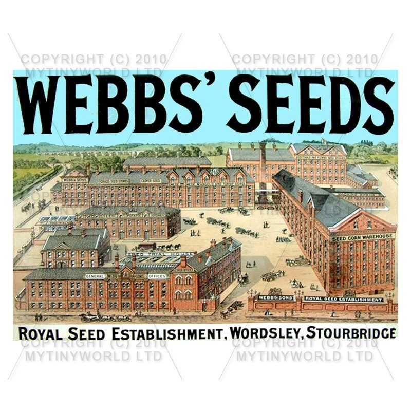Dolls House Miniature Webbs Seeds Shop Sign Circa 1890