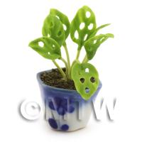 Dolls House Miniature Cheese Plant