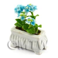 Light Blue Dolls House Miniature Verbenas in a White Flower Pot