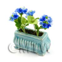 Dark Blue Miniature Verbenas in a Blue Flower Pot