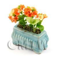Orange  Dolls House Miniature Verbenas in a Blue Flower Pot