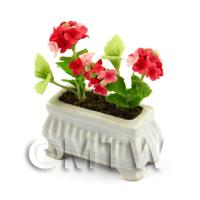 Red  Dolls House Miniature Verbenas in a White Flower Pot