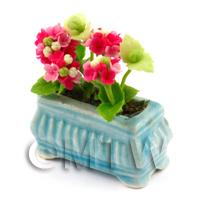 Red Miniature Verbenas in a Blue Flower Pot