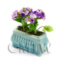 Purple Miniature Verbenas in a Blue Flower Pot