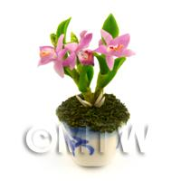 Dolls House Miniature Light Purple Orchid In A Blue Pattern Ceramic Pot