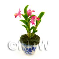 Dolls House Miniature Pink Orchid In A Blue Pattern Ceramic Pot