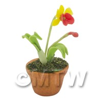 Dolls House Miniature Potted Yellow Orchid