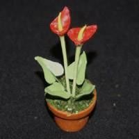 Dolls House Miniature Potted Red Cala Lilly