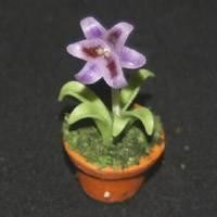 Dolls House Miniature Potted Purple Lilly