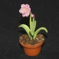Dolls House Miniature Potted Pink Flower