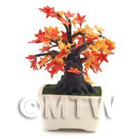 Dolls House Miniature Japanese Maple Bonsai Tree