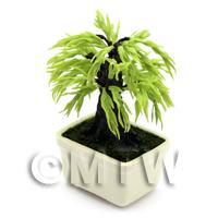 Dolls House Miniature Bonsai Willow Style Tree