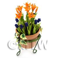 Miniature Orange   Blue Flowers In A Standing Pot