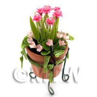 Miniature Pink   White Flowers In A Standing Pot