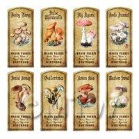 Dolls House Apothecary 8 Fungus / Mushroom Colour Labels Set 2