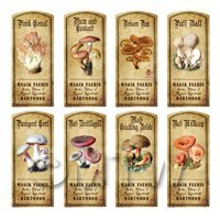 Dolls House Apothecary 8 Fungus / Mushroom Colour Labels Set 4