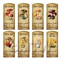 Dolls House Apothecary 8 Fungus / Mushroom Colour Labels Set 7