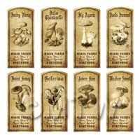 Dolls House Miniature Apothecary 8 Fungus / Mushroom Labels Set 2