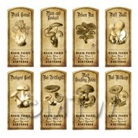 Dolls House Miniature Apothecary 8 Fungus / Mushroom Labels Set 4