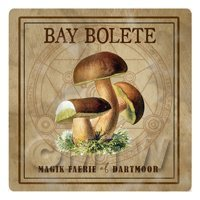 Dolls House Miniature Apothecary Bay Bolete Fungi Colour Box Label