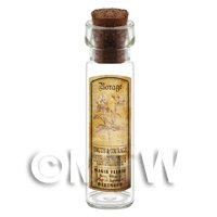 Dolls House Apothecary Borage Herb Long Sepia Label And Bottle