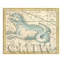 Dolls House Miniature 1800s Star Map With Cetus