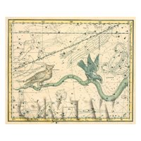Dolls House Miniature 1800s Star Map With Noctua, Corvus And Hydra