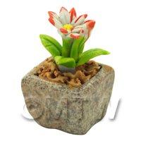 Miniature Handmade Dual Coloured Ceramic Flower (CFD01)
