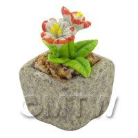 Miniature Handmade Dual Coloured Ceramic Flower (CFD04)