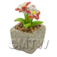 Miniature Handmade Dual Coloured Ceramic Flower (CFD07)