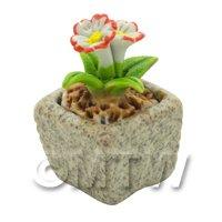 Miniature Handmade Dual Coloured Ceramic Flower (CFD08)