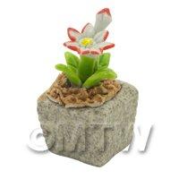 Miniature Handmade Dual Coloured Ceramic Flower (CFD09)