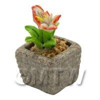Miniature Handmade Dual Coloured Ceramic Flower (CFD10)