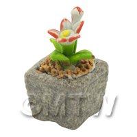 Miniature Handmade Dual Coloured Ceramic Flower (CFD11)
