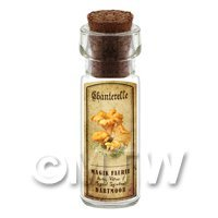 Dolls House Apothecary Chanterelle Fungi Bottle And Colour Label