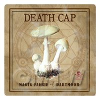 Dolls House Miniature Apothecary Deathcap Fungi Colour Box Label
