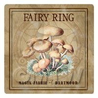 Dolls House Miniature Apothecary Fairy Ring Fungi Colour Box Label