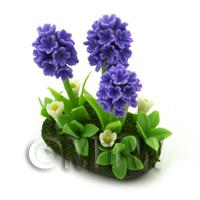 Dolls House Miniature - Dolls House Miniature Flower Bed Hyacinth