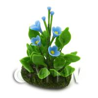 Dolls House Miniature Flower Bed Forget Me Nots