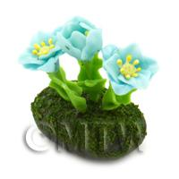Dolls House Miniature Flower Bed Common Poppy