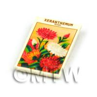 Dolls House Flower Seed Packet - Xeranthemum
