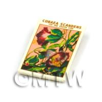 Dolls House Flower Seed Packet - Cobaea Scandens