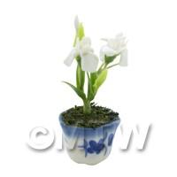 Dolls House Miniature Potted White Iris