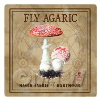 Dolls House Miniature Apothecary Fly Agaric Fungi Colour Box Label