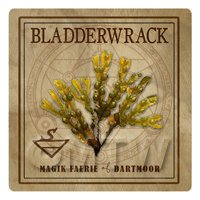 Dolls House Herbalist/Apothecary Square Bladderwrack Herb Label