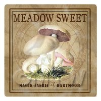 Dolls House Miniature Apothecary Meadow Sweet Fungi Colour Box Label