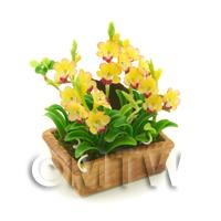 Dolls House Miniature Red / Yellow Cymbidium Orchid Display