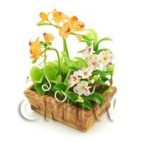 Dolls House Peach Cattleya and White Cattleya Orchids