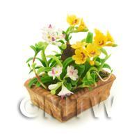 Dolls House Miniature Mixed White / Orange Cattleya Orchids