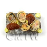 6 Dolls house Miniature Oysters With Ice on a Tray (FSHT27)